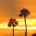 Cocoa Beach Sunset by Katherine Williams