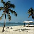 Coconut Beach  by Amar Sheow