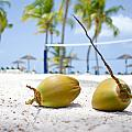 Coconuts by Ferry Zievinger