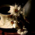 Coffee And Daisies  by Lois Bryan