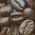 Coffee Bean Macro by David Haskett II