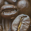 Coffee Beans Macro 2 by David Haskett II