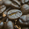 Coffee Beans Macro 3 by David Haskett II