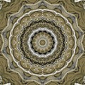 Coffee Flowers 2 Ornate Medallion Olive by Angelina Vick