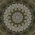 Coffee Flowers 6 Olive Ornate Medallion by Angelina Vick