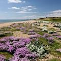 Cogden Beach by Bob Gibbons