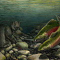 Coho Fishing by Kim Hunter