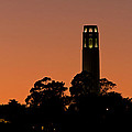 Coit Tower Sunset by Kate Brown