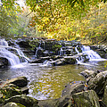 Coker Creek Falls by Debra and Dave Vanderlaan
