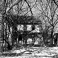 Cold Abandon IIi by Larry Jones