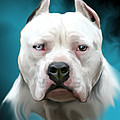 Cold As Ice- Pit Bull By Spano by Michael Spano