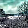 Cold Breezes by Nina Fosdick