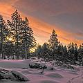 Cold Morning by Maria Coulson