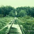 Cold Steel Rails by John Turner