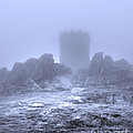Cold Tower Of Mist by Linsey Williams