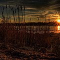 Cold Winter Sunset by David Dufresne