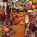 Collage - Corn - Pumpkins - Gourds - Elena Yakubovich by Elena Yakubovich