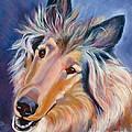 Collie Star by Susan A Becker
