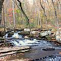 Collin's Creek by Heather Wroten