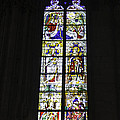 Cologne Cathedral Stained Glass Window Coronation Of The Virgin by Teresa Mucha