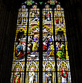 Cologne Cathedral Stained Glass Window Of St Peter by Teresa Mucha