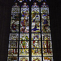 Cologne Cathedral Stained Glass Window Of The Nativity by Teresa Mucha