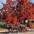 Carriage In Autumn by Jerry Gammon