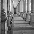 Colonnade by Shirley Radabaugh