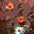 Color 122 by Pamela Cooper