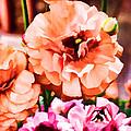 Color 145 by Pamela Cooper
