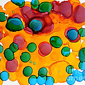 Color Bubbles by Vicki  Housel