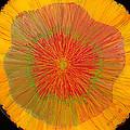 Color Burst 4 by Anna Skaradzinska
