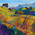 Color Curves by Erin Hanson