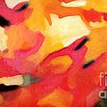 Color Dynamics by Lutz Baar