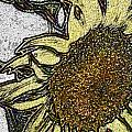 Color Me Sunflower by Elaine Berger