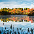 Color On Grist Millpond by Michael Blanchette