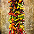 Color Peppers From Spain With Textured Background Dsc01467 by Greg Kluempers