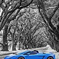 Color Your World - Lamborghini Gallardo by Steve Harrington