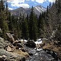 Colorado Wild by Mireille  Damicone