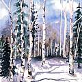 Colorado Aspens 2  by Barbara Jewell