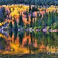 Colorado Autumn by Jon Burch Photography