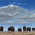 Colorado Bison Moving On by Lesley Nolan