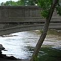 Colorado Bridge by Lord Frederick Lyle Morris - Disabled Veteran