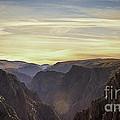 Colorado Canyon Morning by Janice Pariza