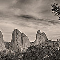 Colorado Garden Of The Gods Mono Tone View by James BO Insogna