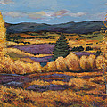 Colorado by Johnathan Harris