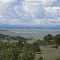 Colorado Meadow by Scott Sanders