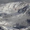 Colorado Mountain High by Fiona Kennard