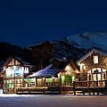 Colorado Mountain Life by Michael J Bauer