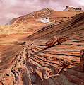 Colorado Plateau Sandstone Arizona by Yva Momatiuk and John Eastcott